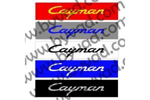 Cache plaque immatriculation PORSCHE Cayman