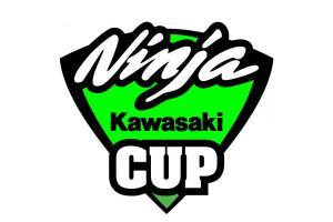 Stickers Kawasaki Ninja CUP