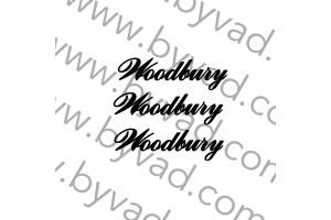 Kit 3 stickers Austin mini Woodbury